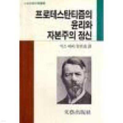 프로테스탄티즘의 윤리와 자본주의 정신(문예출판사)