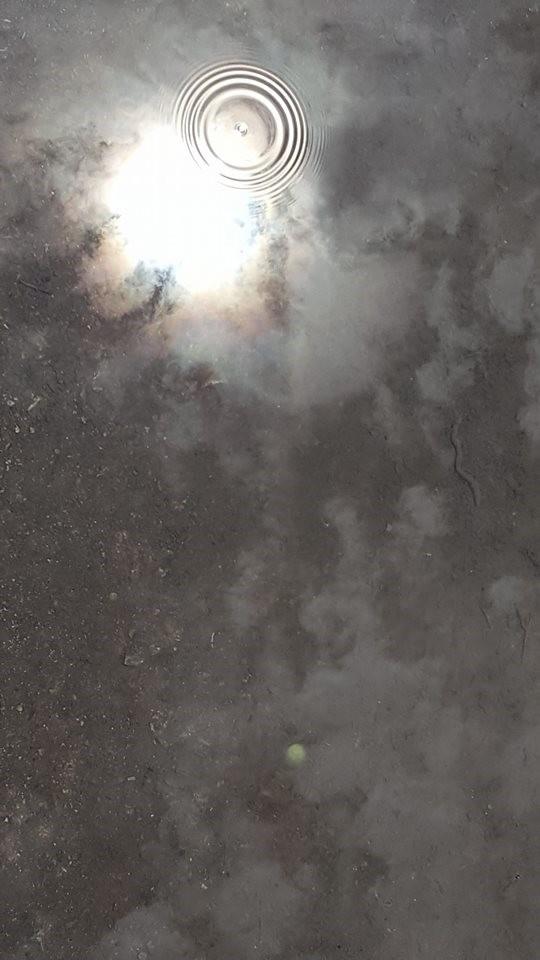 해를 품은 하늘과 그 사이를 떠도는 구름이 땅 위에 갇혔다.