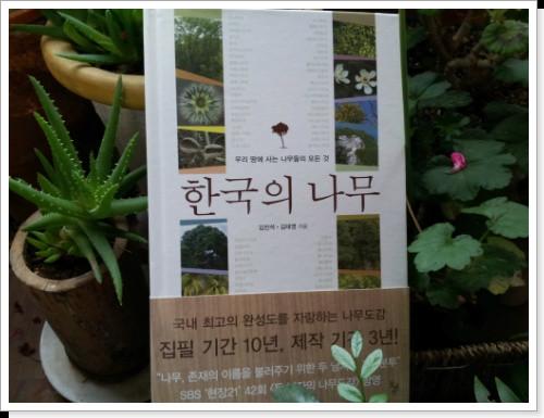 한국의나무우리땅에사는나무들의모든것