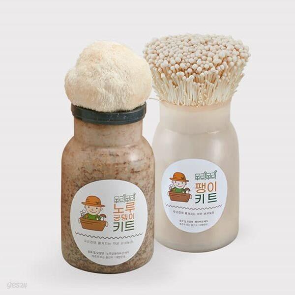 무럭무럭 노루궁뎅이버섯+팽이버섯 키우기 키트