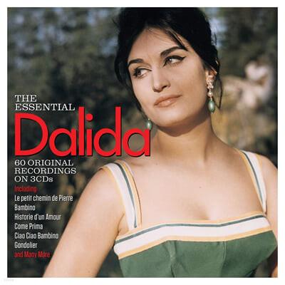 Dalida (달리다) - The Essential