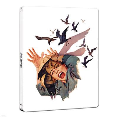 새 (2Disc, 4K UHD+BD 스틸북 한정수량) : 블루레이