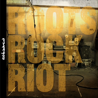 Skindred - Roots Rock Riot (Green LP + 7 inch Single LP)