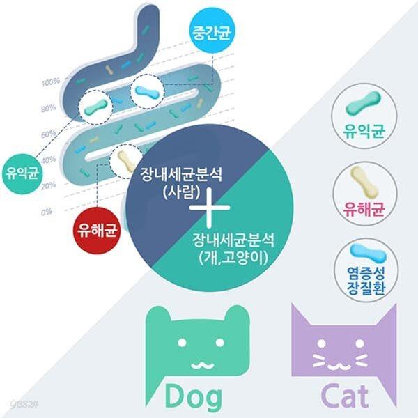 장내세균검사(사람)&반려동물(개/고양이) 유해균,유익균