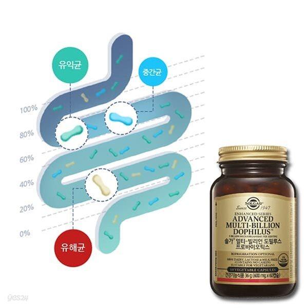 큐체크 장내세균검사(비만균포함) & 솔가유산균