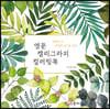 영문 캘리그라피 컬러링북