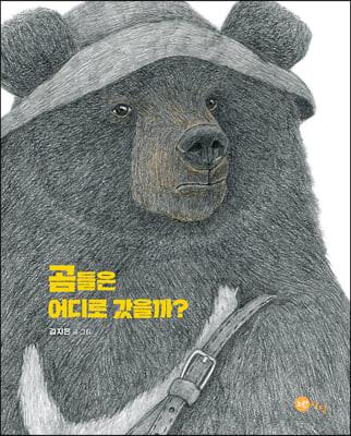 곰들은 어디로 갔을까?