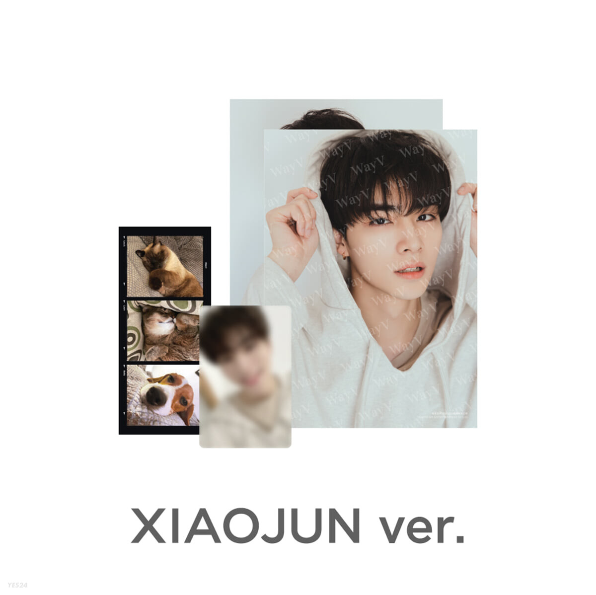 [XIAOJUN] PHOTO PACK [Our Home : WayV with Little Friends]