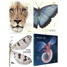아트 사이언스시리즈(전4권/경이로운 동물들+놀라운 나비들+놀라운 곤충+바다의 비밀)