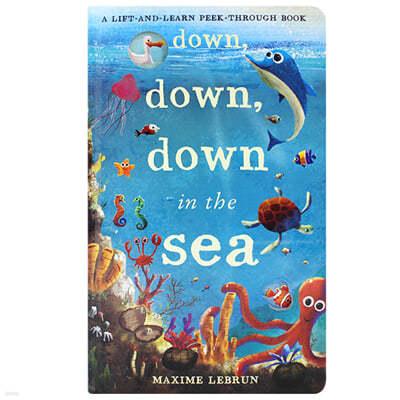 [스크래치 특가] A Lift-and-Learn Peek-Through Book : Down, Down, Down in the Sea