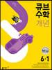 큐브수학 개념 초등 수학 6-1 (2022년)