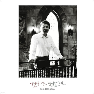 김동규 - 시월의 어느 멋진 날에 [LP]
