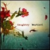 Daughtry - Baptized (Deluxe Edition)