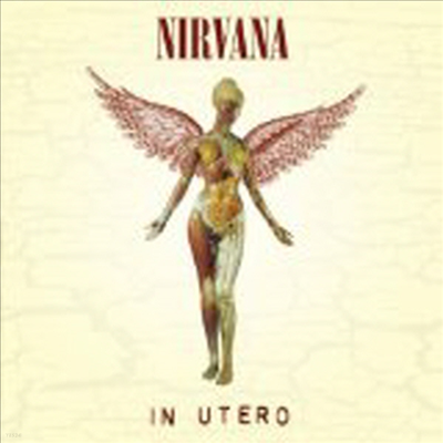 Nirvana - In Utero (20th Anniversary Edition)(CD)