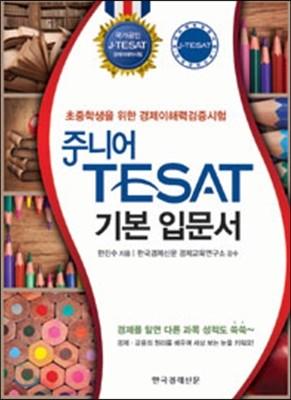 주니어 TESAT 기본 입문서