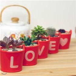 LOVE ���� �̴�ȭ�� [5����Ʈ]