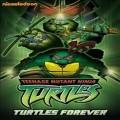 Teenage Mutant Ninja Turtles: Turtles Forever (닌자 거북이) (지역코드1)(한글무자막)(DVD) (2010)