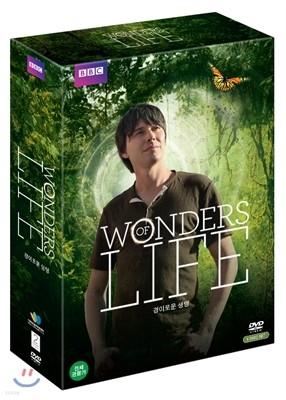 경이로운 생명: BBC HD 사이언스 스페셜 (5Disc)
