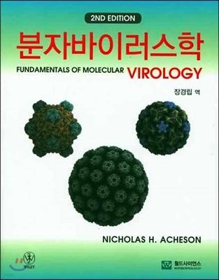 분자 바이러스학