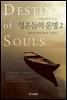 영혼들의 운명 2