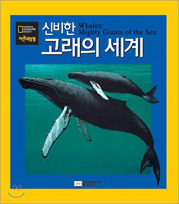 신비한 고래의 세계