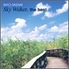 Isao Sasaki - Sky Walker.. The Best