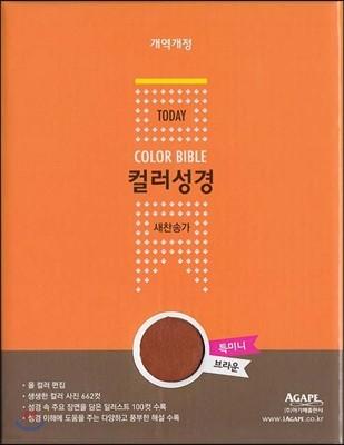 개역개정 투데이 컬러성경 새찬송가 (특미니/합본/색인/지퍼)(브라운)