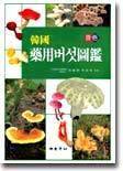 원색 한국약용버섯도감