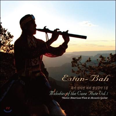 Estun Bah (에스툰 바) - 북미 인디언 피리 명상음악 1집 (Melodies of the Cane Flute Vol.1)