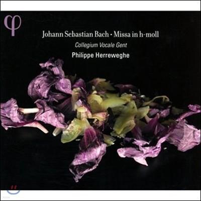 Philippe Herreweghe 바흐: 미사 B단조 BWV232 (Bach: Missa in B minor)