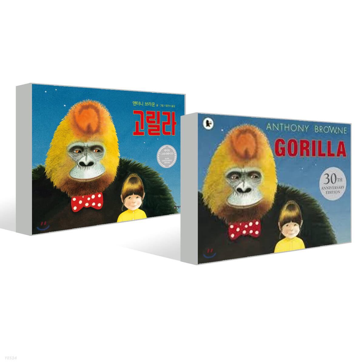 고릴라 + Gorilla