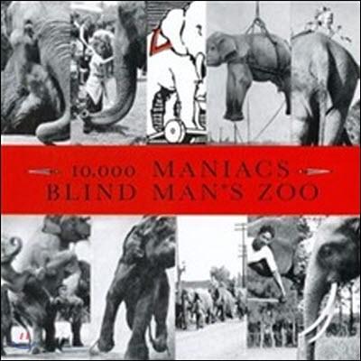 10,000 Maniacs / Blind Man's Zoo (수입/미개봉)