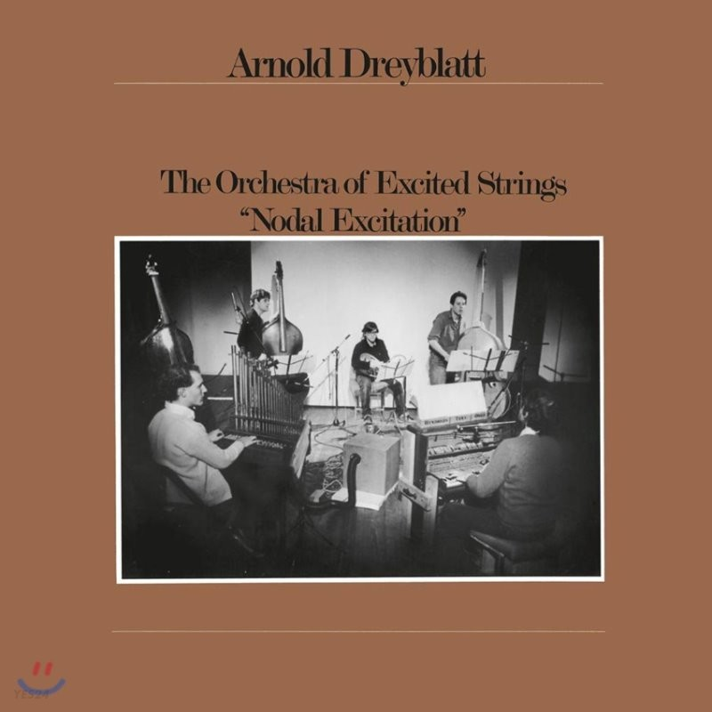 Arnold Dreyblatt & The Orchestra of Excited Strings (아놀드 드레이블랫) - Nodal Excitation [LP]