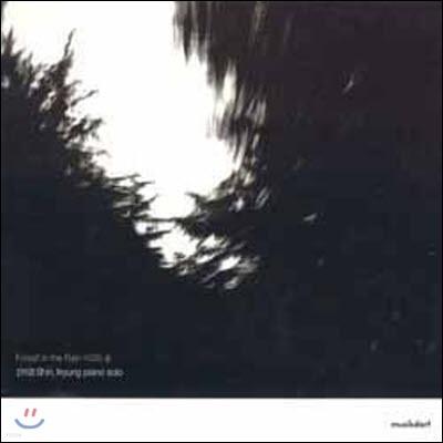 [중고] 신이경 / 1집 Forest In The Rain (비오는 숲/이병우 프로듀스)