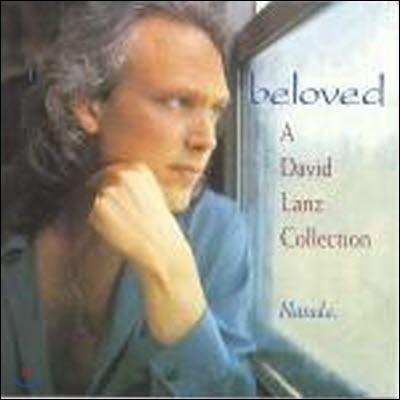 [중고] David Lanz / Beloved David Lanz Collection