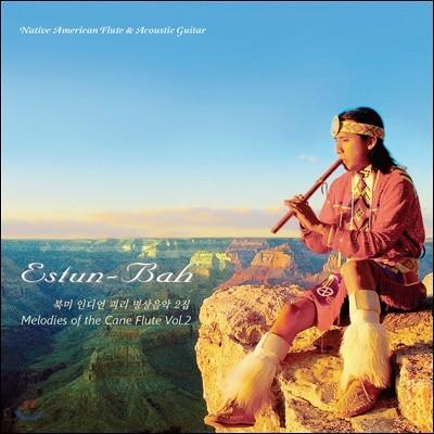 Estun-Bah 에스툰 바 - 북미 인디언 피리 명상음악 2집 (Melodies of the Cane Flute Vol.2)