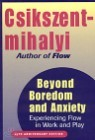Beyond Boredom and Anxiety: Experiencing Flow in Work and Play (Hardcover)
