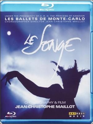 Les Ballets de Monte-Carlo 장 크리스토프 마이요의 발레 '꿈' - 몬테카를로 발레단 ('Le Songe' by Jean-Christophe Maillot)