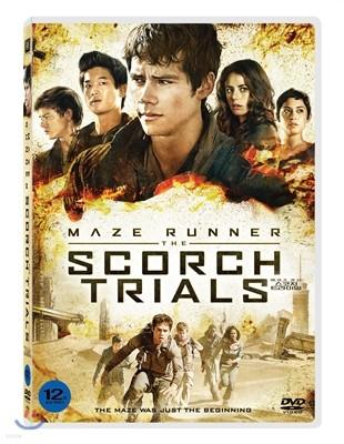 메이즈 러너 : 스코치 트라이얼 (1Disc)