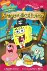Spongebob Squarepants Chapter Book #14 : Pirates of Bikini Bottom