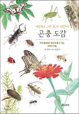 곤충 도감 : 세밀화로 그린 보리 어린이 도감