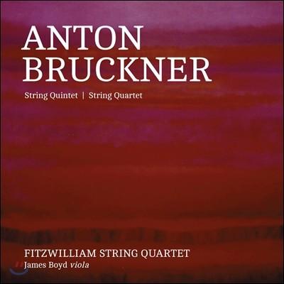 Fitzwilliam String Quartet 브루크너: 현악 사중주, 오중주 - 피츠윌리엄 사중주단 (Anton Bruckner: String Quintet WAB112, Quartet WAB111, Intermezzo WAB113)