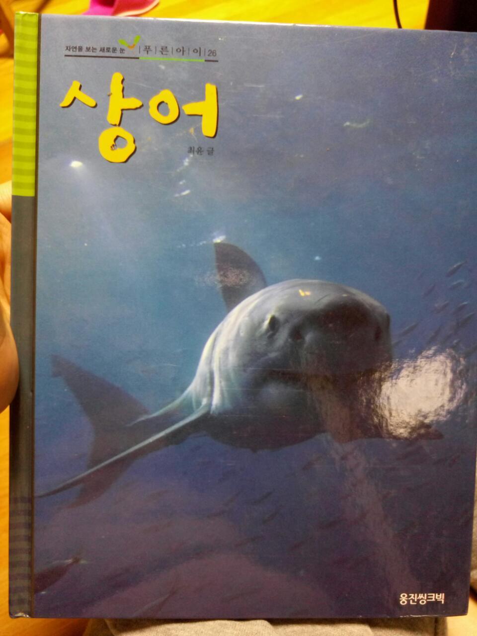 웅진 푸른아이 26 상어
