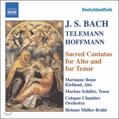 Helmut Muller-Bruhl 바흐 / 텔레만 / 호프만: 알토와 테너를 위한 종교 칸타타 (Bach / Telemann / Hoffmann: Sacred Cantatas for Alto & for Tenor)