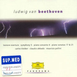 PanoramaㆍLudwig van Beethoven Ⅱ