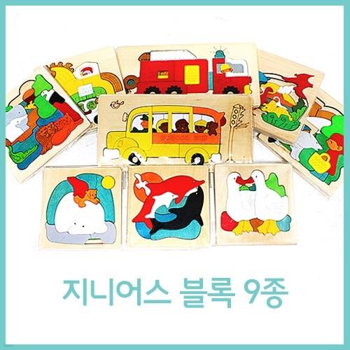 [한국교육시스템] 지니어스블록 9종세트
