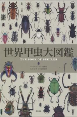 世界甲蟲大圖鑑