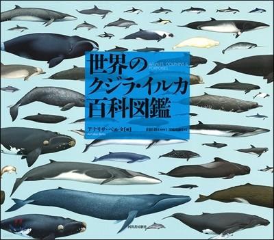世界のクジラ.イルカ百科圖鑑
