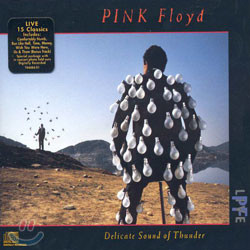 Pink Floyd - Live Delicate Sound Of Thunder