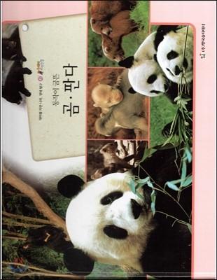 올빼미 자연관찰 43 동작이 굼뜬 곰,판다 (포유류)